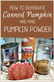 Pumpkin Puree Vs Pumpkin Pie Filling by How To Dehydrate Canned Pumpkin Puree And Make Pumpkin Powder