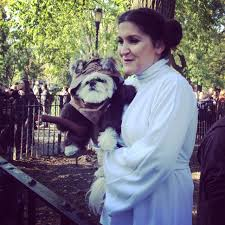 Grants Farm Halloween 2014 by Tompkins Square Halloween Dog Parade Or Puppies New York Cliché
