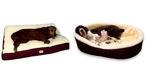 Petco Dog Beds by Bedroom Attractive Dog Furniture Pet Sofa Couch Beds For Large