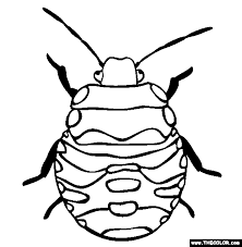 Stink Bug Coloring Page