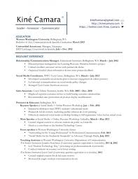 Professional Profile Resume Examples Vs Objective Accounting Experience On With