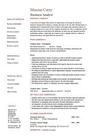Business Analyst Resume Example Sample Professional Skills