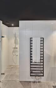 schwarze badezimmerdecke badezimmer decken schwarze decke