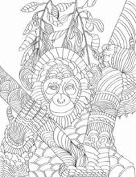 Animal Adult Coloring Book Nature Patterns For Creativity Calm
