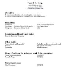 Salesperson Resume Sample Experience 1 Year For Accountant