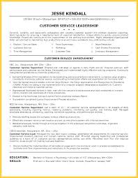 Team Leader Resume Manufacturing Examples Sample