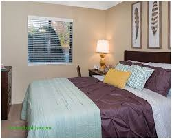 1 Bedroom Apartments Greenville Nc by One Bedroom Apartments Greenville Nc Fresh University Park