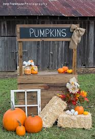 Pumpkin Farm Maryland Heights Mo by Best 25 Pumpkin Patch Photography Ideas On Pinterest Fall Photo