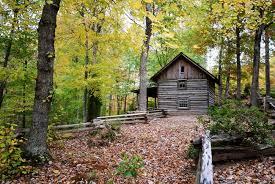 1800 s cabin in the woods landscape by Jason Keller