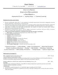 Best Executive Resume Examples Board Of Directors Sample