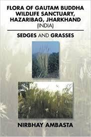 Buy Flora Of Gautam Buddha Wildlife Sanctuary Hazaribag Jharkhand India Sedges And Grasses Book Online At Low Prices In