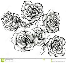 Flower sketch bouquet royalty free stock photo image