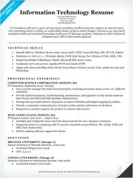 Examples Of It Resumes Resume Objectives Career
