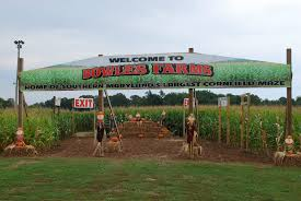 Best Pumpkin Farms In Maryland by Home