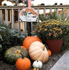 Underwood Farms Pumpkin Patch Hours by Mike U0027s Farm Home Facebook