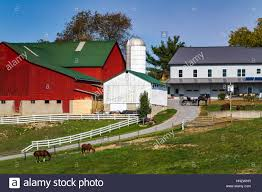An Amish Farm With House And Barn Near Charm, Ohio, USA Stock ... Portable Amish Barns For Sale 2017 Prices And Photos Old Barn On County Road In Holmes Ohio Stock Photo Blog Beachy Columbus Buildings Sheds Horse Fisher Barn Images 224 Mcq Travels Mast Mini Garden Studio Home Springtime Country Is A Beautiful Thing Click Here For Pole Builder Lester Awesome Looking Premier Dutch Goat Shed Cstruction Millersburg