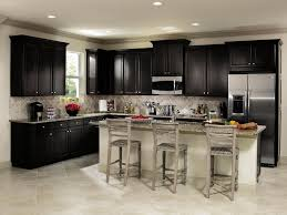 Fascinating Black Aristokraft Cabinets With Mosaic Tile Back Splash And Frige For Kitchen Decor Ideas