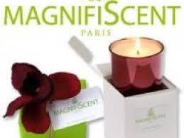 bougies parfumees pas cheres pourquoi les bougies parfumées de marque sont elles si chères