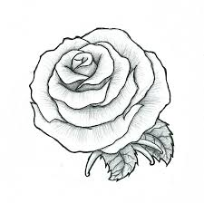 Rose Maybe A Fist Tattoo By PulverisedFetus