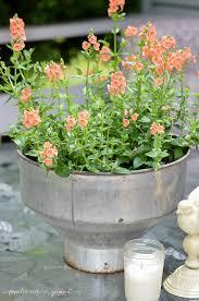 I Love This Unique Rustic Flower Pot Idea