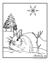 Winter Bunny Coloring Page