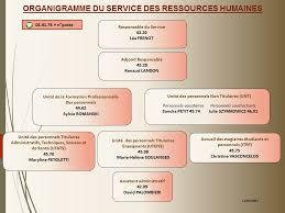 présentation du service des ressources humaines de l insep insep