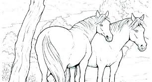 Horse Coloring Pages Free Printable Online Awesome For