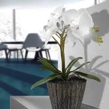 möbel wohnen led kunst pflanze orchidee blumen topf