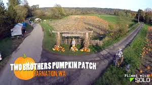 Pumpkin Patch Seattle Washington by Halloween A Trip To Two Brothers Pumpkin Patch Carnation Wa Youtube