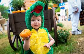 Grants Farm Halloween Events 2017 by Celebrate Halloween With Your Family At These Spooky Houston Events