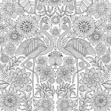 Blooms Birds And Butterflies Adult Coloring Book