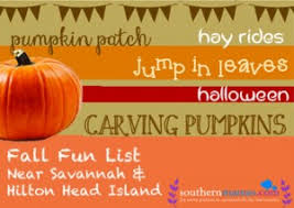 Pumpkin Patch Fort Wayne 2015 by Southern Mamas Pumpkin Patches