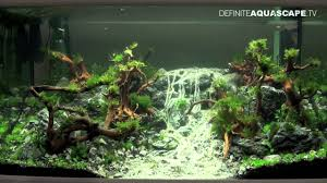 Aquascaping - Qualifyings For The Art Of The Planted Aquarium 2015 ... Out Of Ideas How To Draw Inspiration From Others Aquascapes Aquascaping Aquarium The Art The Planted Plant Stock Photo 65827924 Shutterstock Continuity Aquascape Video Gallery By James Findley Green With River Rocks Aqua Rebell Qualifyings For 2015 Maintenance And Care Guide Outstanding Saltwater Designs 2012 Part 1 Youtube Dennerle Workshop Fish
