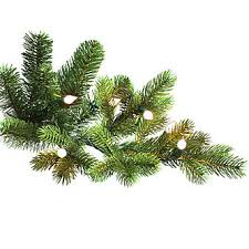 Ge Pre Lit Christmas Tree Replacement Bulbs by General Electric 7 5 U0027 Pre Lit Just Cut Norway Spruce Tree With 800
