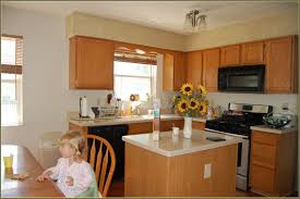 Kitchen Kompact Cabinets Complaints by Kitchen Entertain Installing Home Depot Kitchen Cabinets