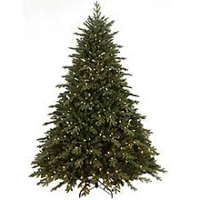 75 Pre Lit Norwegian Spruce Tree With 800 Dual
