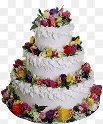 cake Cake Birthday Cake Chiffon Cake PNG Image