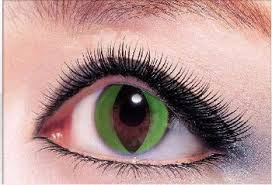 cat contacts green cat eye colored contact eye lenses in fast delivery