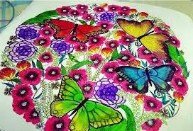 Animal Kingdom Coloring Book Bird Kolorista