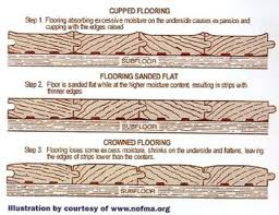 Buckled Wood Floor Water by Water Damaged Flooring Water Damage U0026 Mold Removal Blog