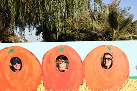 Fresno Pumpkin Patch by The Real Housewife Of Fresno Pumpkin Patch