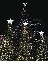Twinkling Christmas Tree Lights Canada by The Ultimate Bucket List Of Everything You Have To Do This
