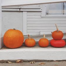 Chatham Kent Pumpkin Patches by New England Tours The Ultimate Road Trip For Fall Foliage