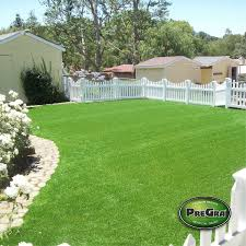 PreGra BerMuda Artificial Grass Prolawn Turf Putting Greens Pet Plastic Los Chaves New Mexico Backyard Playground Coto De Caza Extreme Makeover Pictures Synthetic Cost Brea California San Diego Fake Solutions Fresh For Home Depot 4709 Celebrity Seattle Bellevue Lawn Installation Life With Elise Astroturf Backyards Wondrous Supplier Diy Install