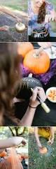 Maniac Pumpkin Carvers Facebook by 225 Best Pumpkin Carving Images On Pinterest Halloween Pumpkins