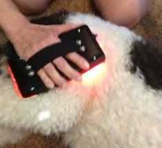 Infrared Lamp Therapy Side Effects by 88 Best Infrared Light Therapy Images On Pinterest Saunas Light