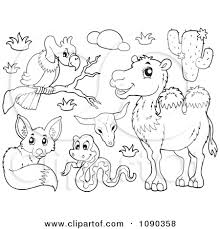 Pin Desert Clipart Plants And Animal 14