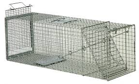 live cat trap humane live animal traps wildlife trapping