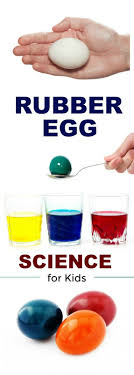 Rainbow Rubber Egg Experiment For Kids