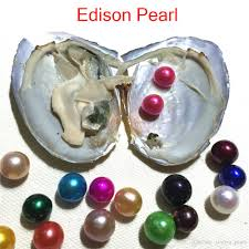 100 Where Is Dhgate Located 2019 Mix Colors Near Round Freshwater Edison Twins Pearl In Oyster